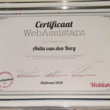 Ontwikkeling Webassistant